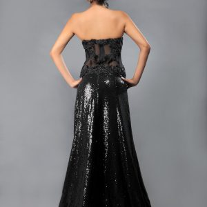 Sheer_sexy_black_gown_back